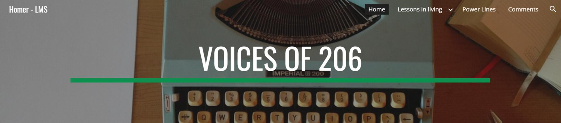 Voices of 206 website banner